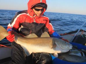 Рыбалка на треску в Мурманске