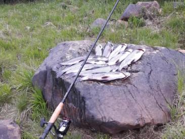 Ловля на реке Поной