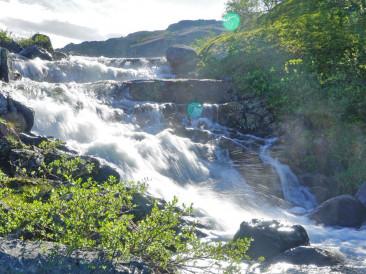 Ловля на реке Зарубиха