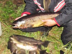 Рыбалка на Кумжу