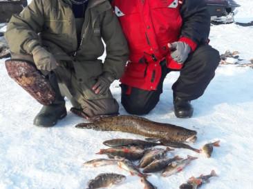 Рыбалка зимой в Ловозерском и Кольском